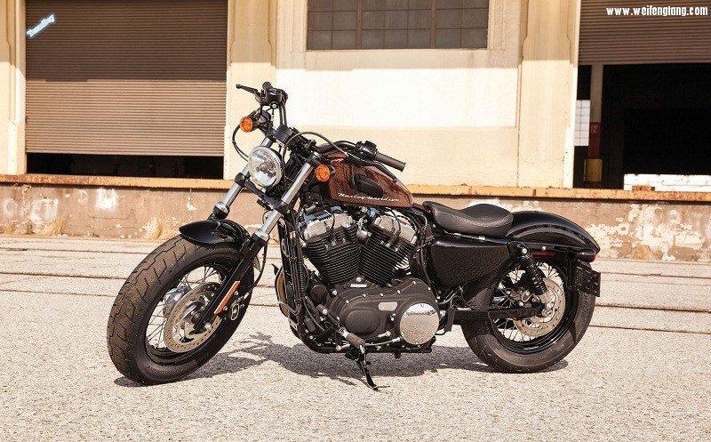 2014-Harley-Davidson-Forty-Eight1.jpg